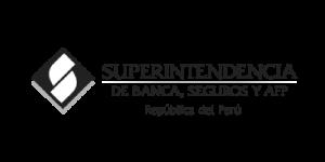 SUPERINTENCIA-DE-BANCA-SEGUROS-Y-AFP